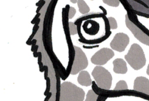 2016-02-10-weekly-giraffe-thumbnail